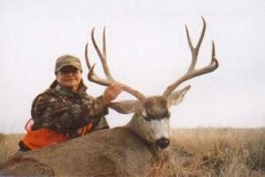 Mule-Deer3