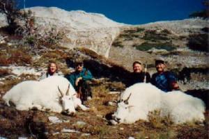 Mountian-Goats3