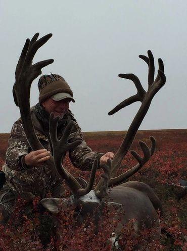 Alaska Drop Camp Caribou Hunt for only $2850